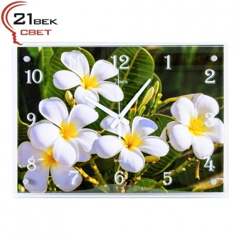 """Часы настенные """"21 Bek"""" 4056-896"""